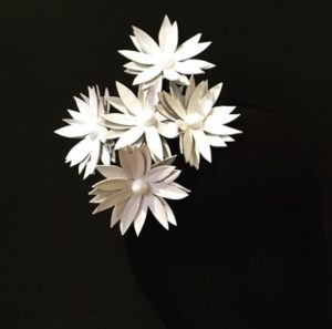 Millinery Jill Daisies White Pearl Rent Hire